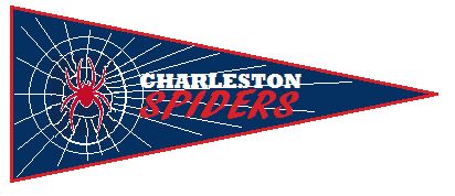 Charleston Spiders - Dixie League Champion - 2013
