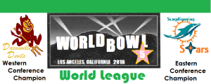 world-bowl-banner