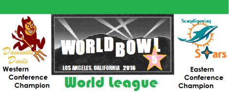 world-bowl-banner